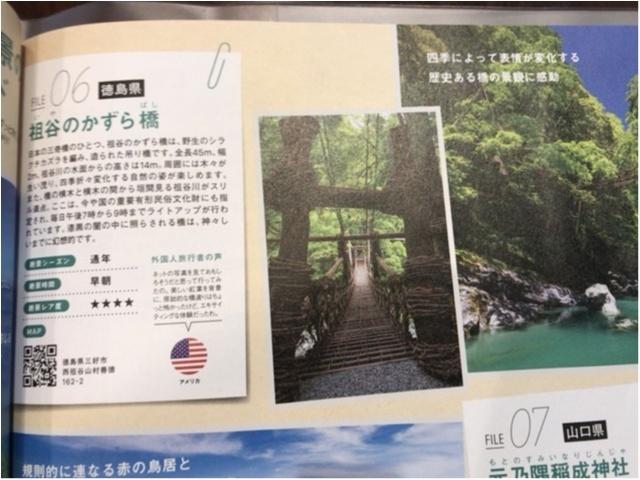 【一度は行きたい日本の絶景】徳島・祖谷のかずら橋_2