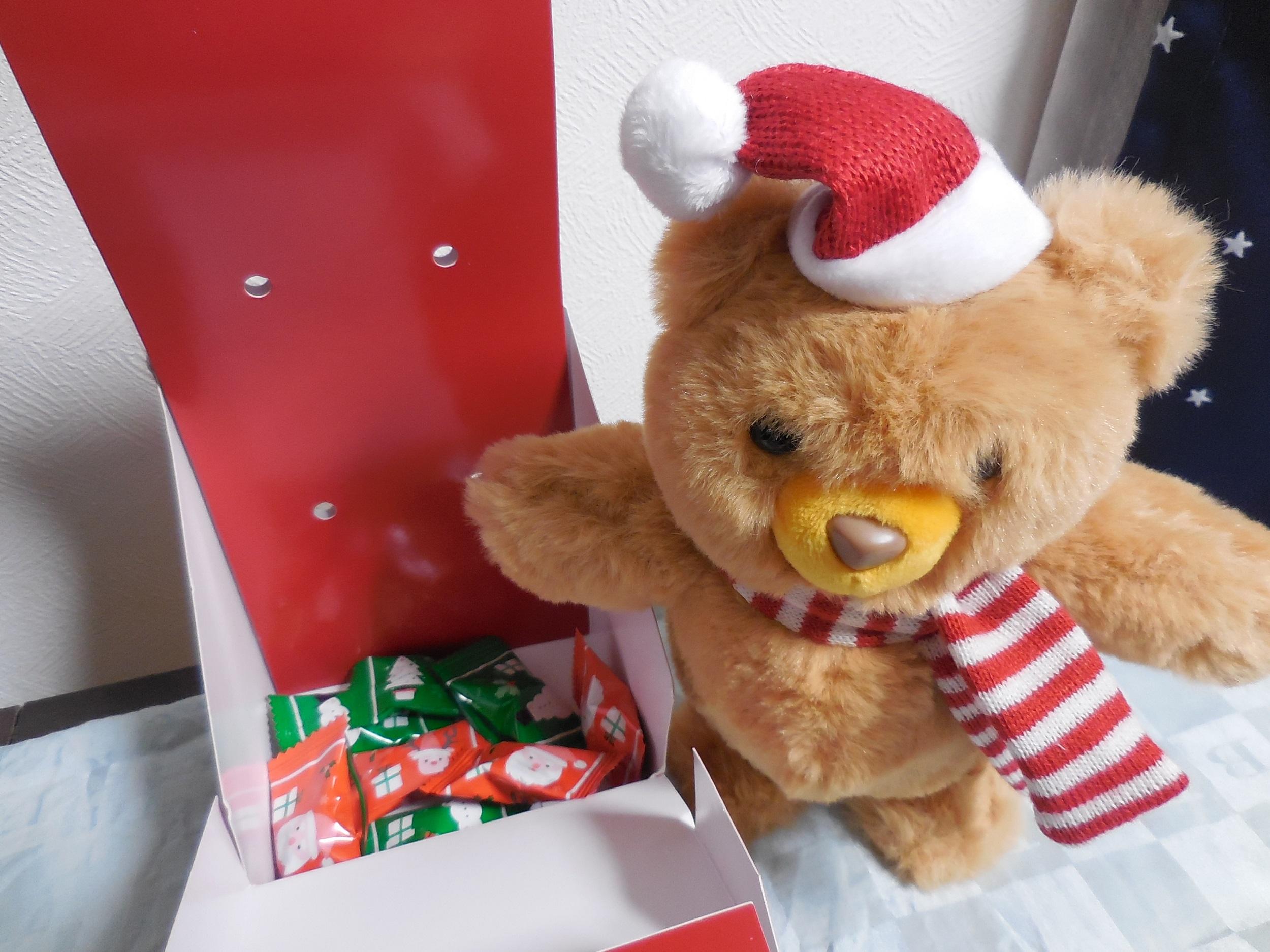 【カルディ】史上最強にかわいいクリスマストコトコベア_4