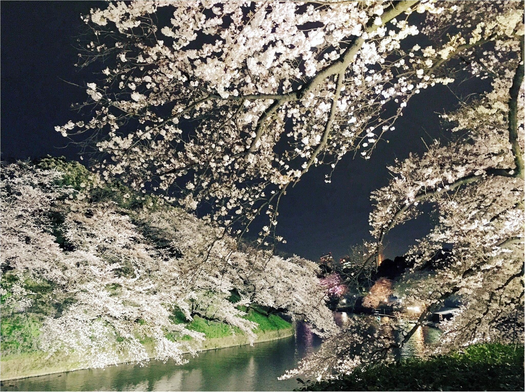 夜桜はしごしました♡六本木〜千鳥ヶ淵_4