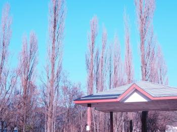 【#河口湖合宿】富士山の目の前のペンションでわいわい一泊旅♩〜グルメ・観光編〜