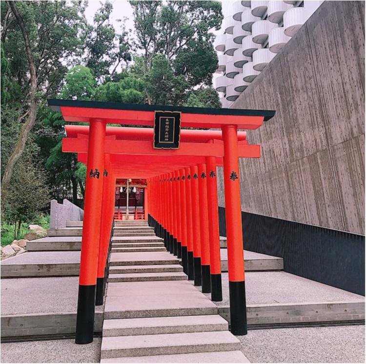 【ご当地MORE神戸】生田神社で恋愛についてお願いしてきました。笑っ_4