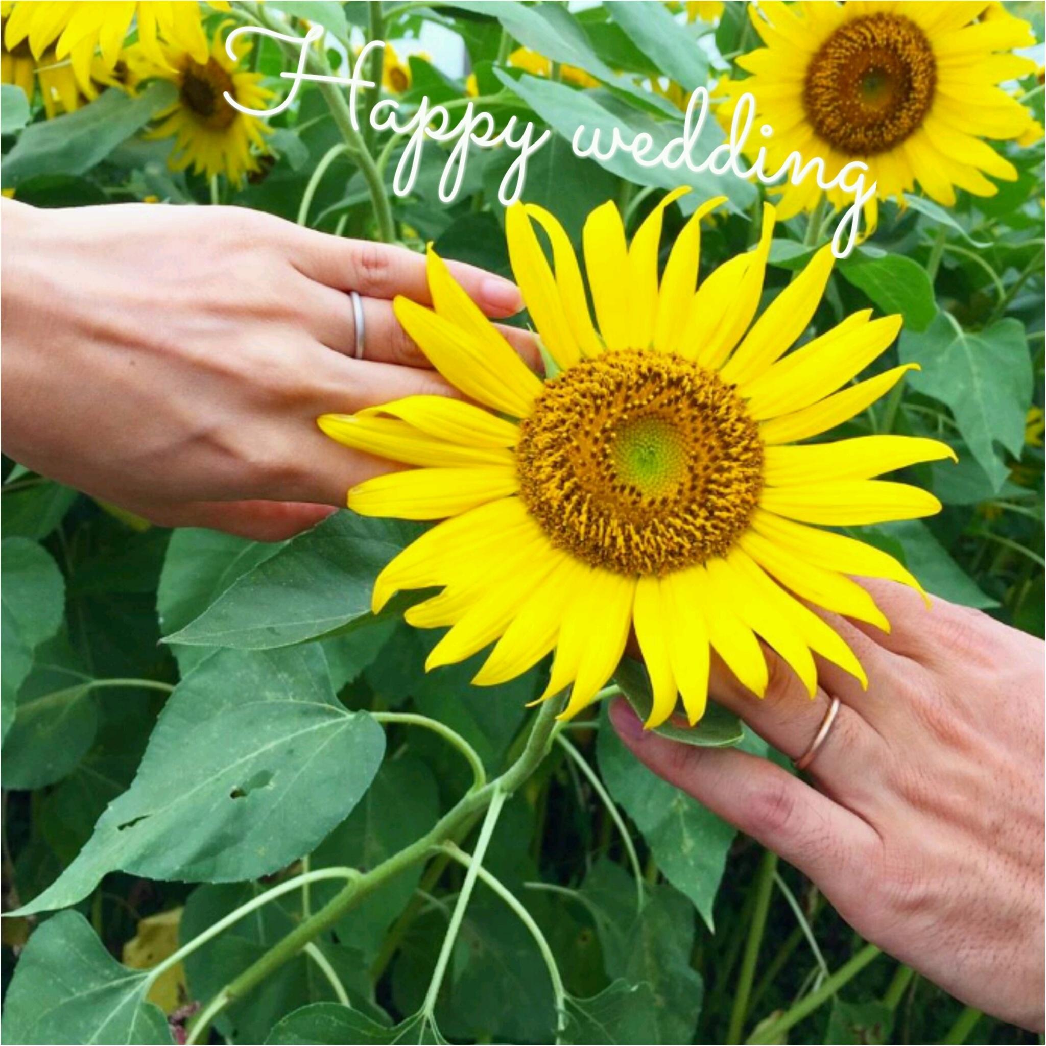 結婚指輪のおすすめブランド特集 - スタージュエリー、4℃、ジュエリーツツミなどウェディング・マリッジリングまとめ_52