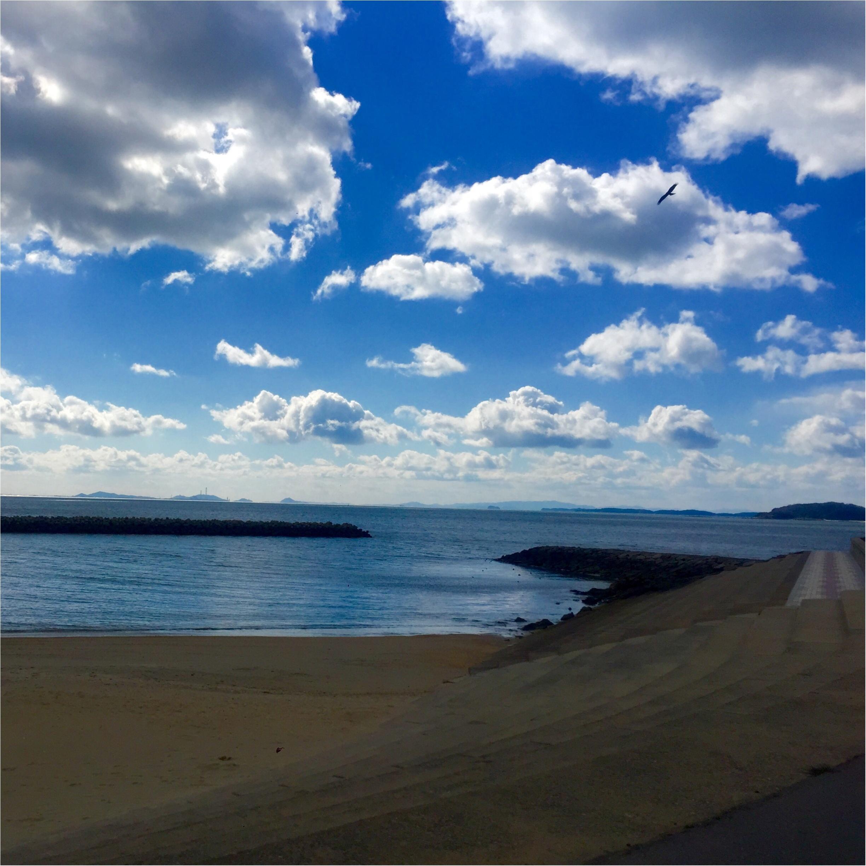 【愛知県西尾市】cafe Oceanでゆとりある時間を楽しもう!_4