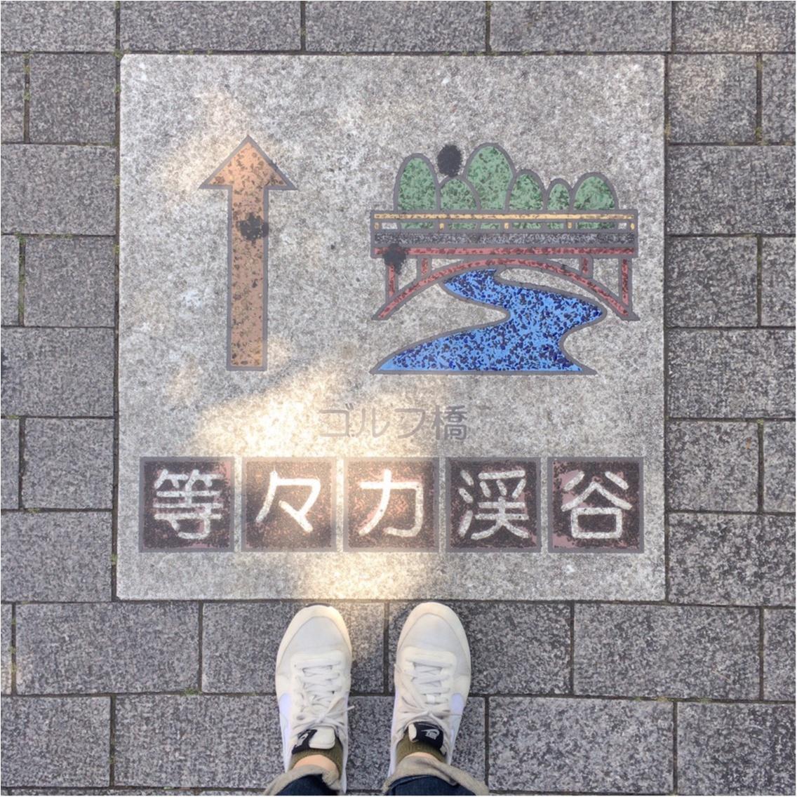 都内で大自然を楽しめる場所見つけた♡_1