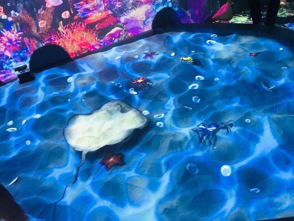 【光の深海展 OCEAN BY NAKED】日本初上陸!《光の海》が幻想的すぎるデジタルアート展へ♡_8