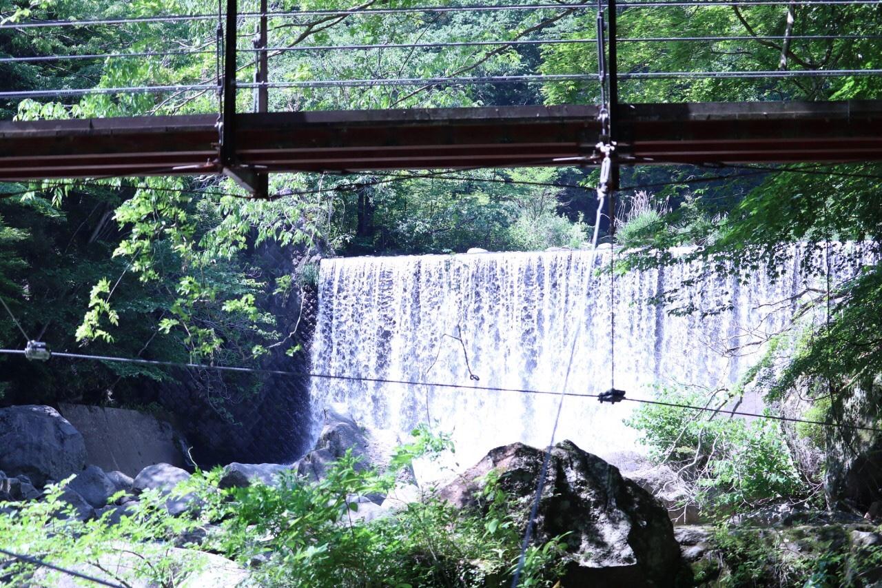 【箱根】自然と温泉とグルメを満喫する旅♨_2