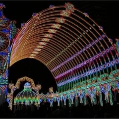 開催期間、17日まで! 輝きを増した 神戸ルミナリエ~未来への眼差し~