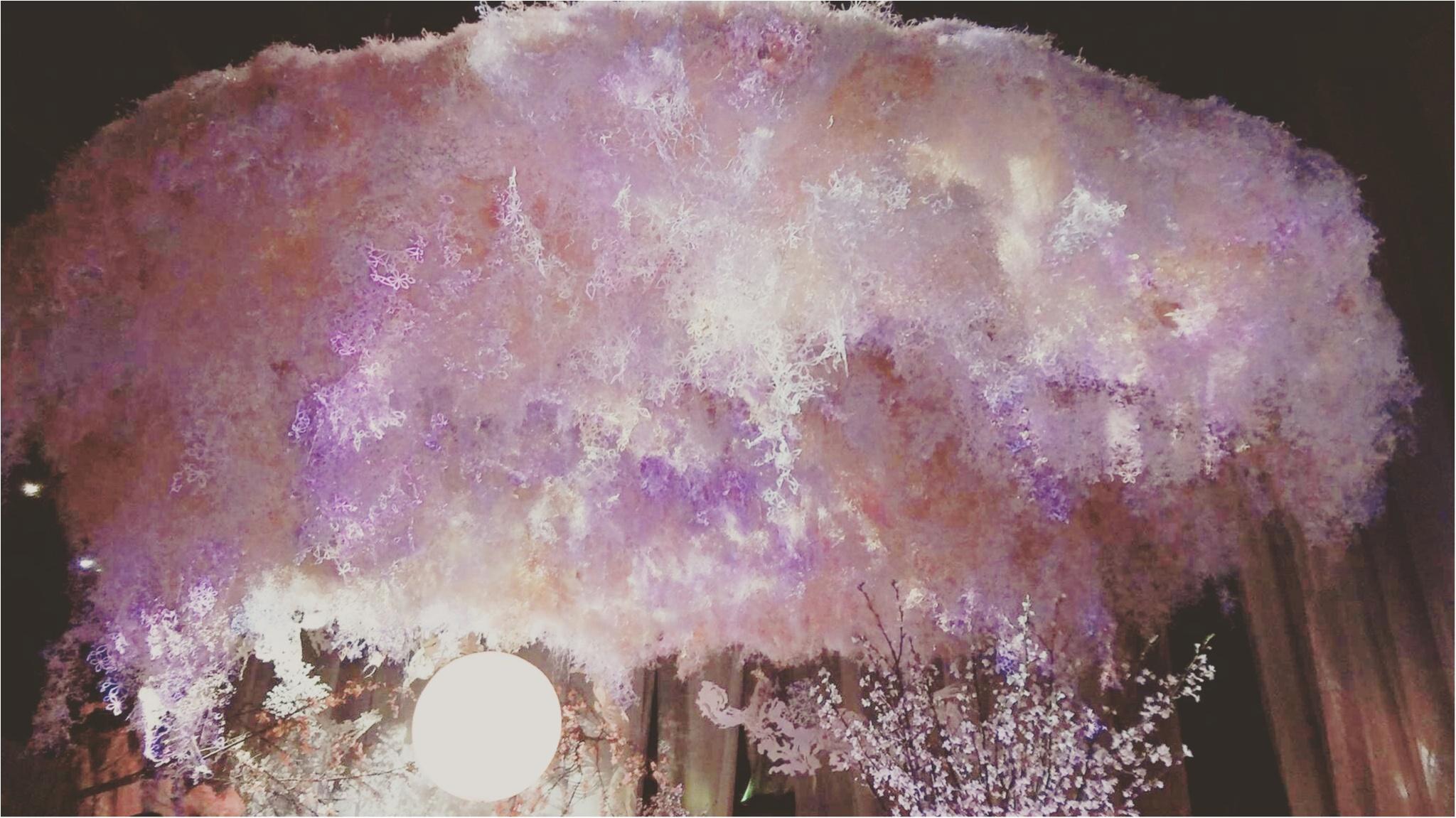 今年も開催中!通算15万人動員の日本一早いお花見イベント「 FLOWERS by NAKED 2017 ー立春ー」@日本橋≪samenyan≫_7