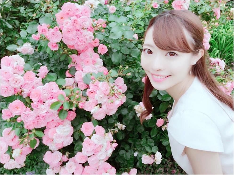 女の子の憧れ♡バラ園で素敵なひと時を、、(*^ω^*)_12