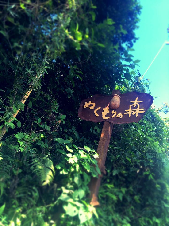 おとぎの国がココに。静岡に行ったら一度は行きたいかわいすぎる世界へ_1