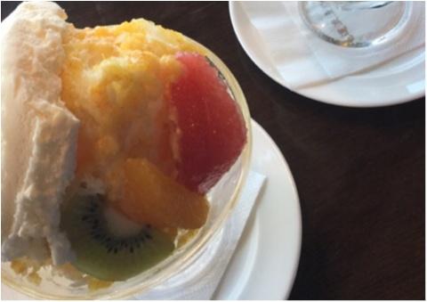 【ご当地かき氷】ここでしか食べれないご当地かき氷❤️広島・尾道で人気な《尾道浪漫珈琲》_3