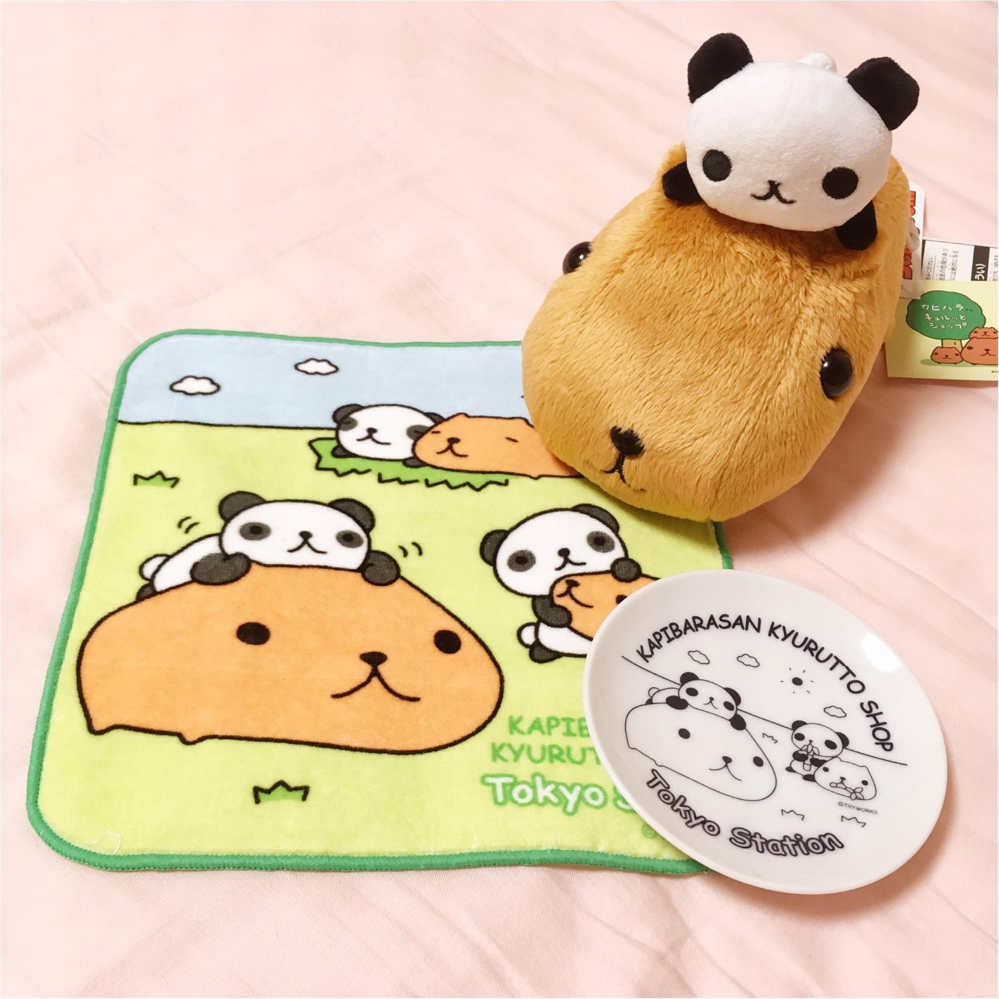 【カピバラさん】と【パンダ】がコラボ♪限定グッズを見逃すな♡_2