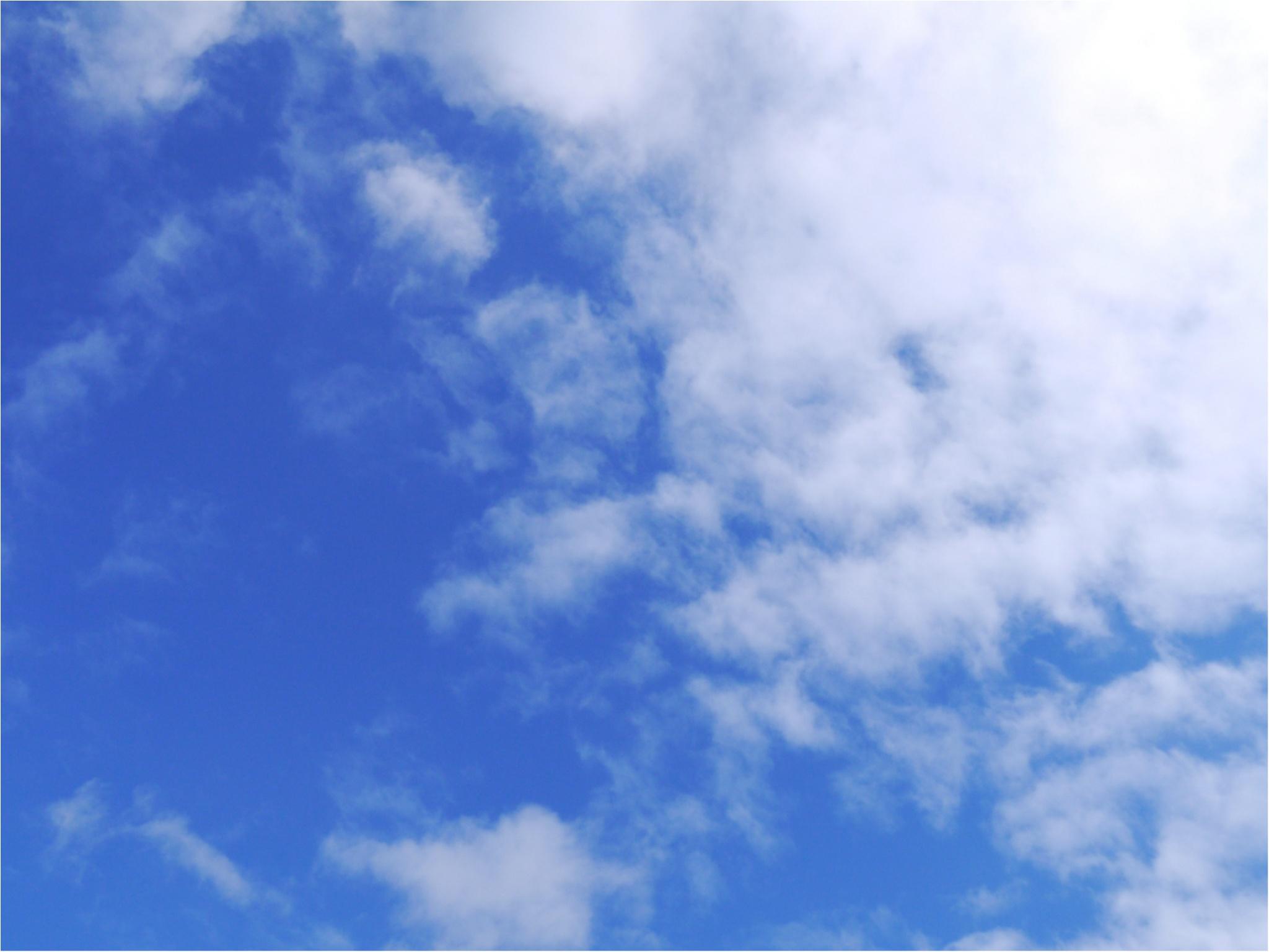 【MORE】6月号発売中!豪華付録「スヌーピーのスマートフォン用スタンド&ふかふかポーチ」付き_1