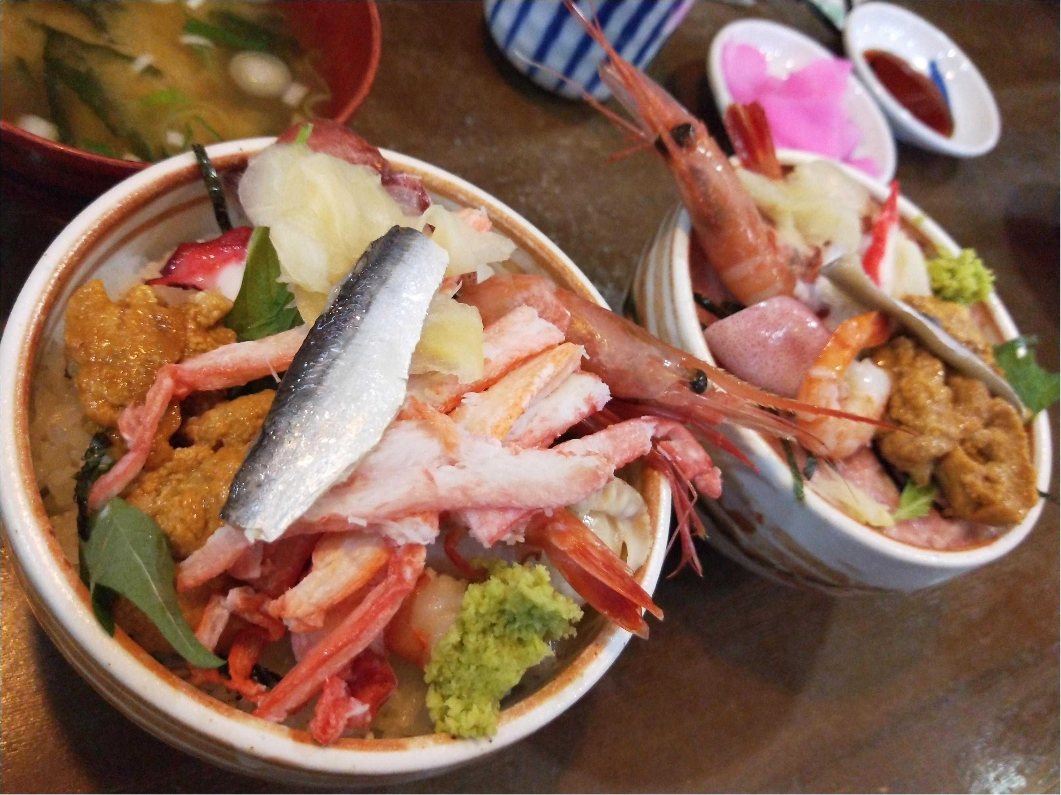丘一面に広がる青い絨毯「ネモフィラ」観賞と新鮮な海鮮丼を食すバスツアー✨_3_1