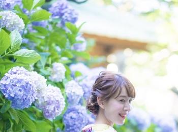 鎌倉の穴場!?紫陽花スポット♡